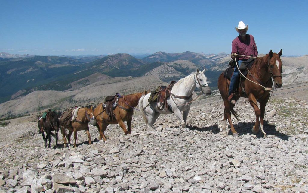 Riding trails in the Bob Marshall Wilderness